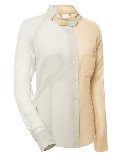 _special editon blouse